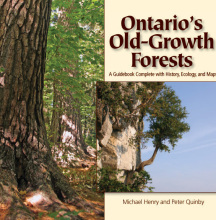 Ontarios Old Growth Forests On Amazonca