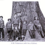 Sauble Elm, 267 years old.  Steve Patterson / Grey Sauble Conservation