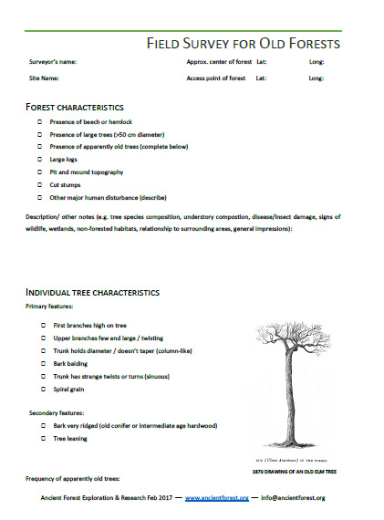 old trees survey first page